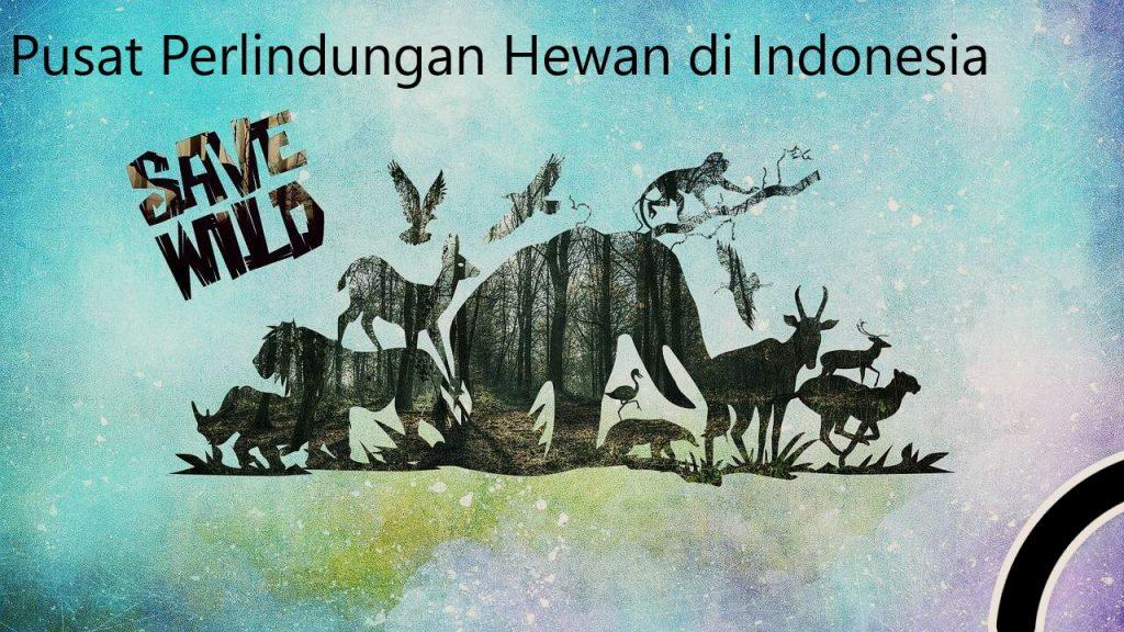 Pusat Perlindungan Hewan di Indonesia